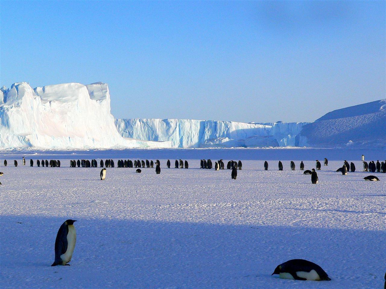 以史为鉴 新技术分析十几万年前冰川融化事件