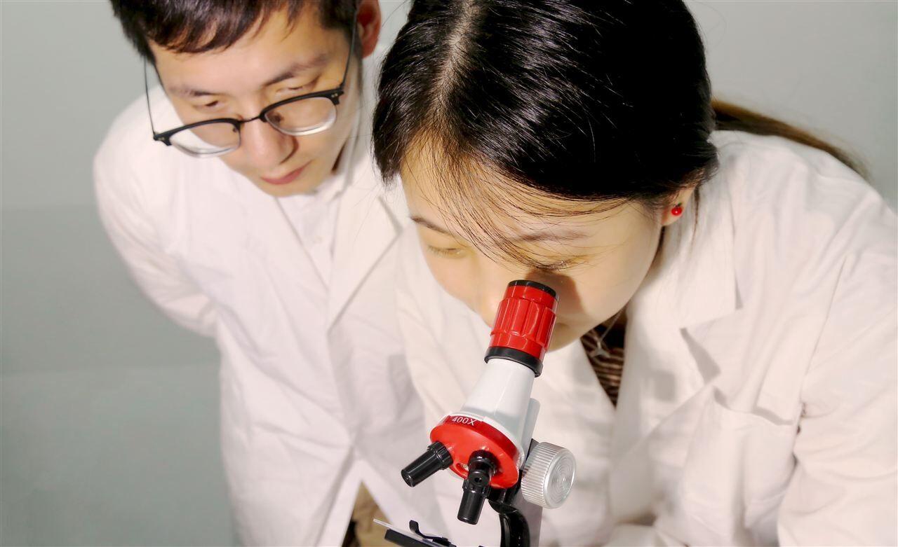 暨南大学101万采购高分辨扫描电子显微镜